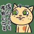 浮誇慵懶貓貓的日常