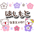 hasimoto_oo