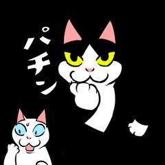 A little fat cat anime6