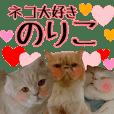 cat paradise noriko