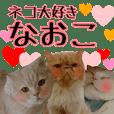 『ネコ写真』名前スタンプ【なおこ】