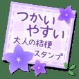 Flower-Kikyo