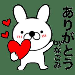 Name rabbit Nagomi