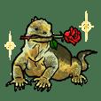 Galapagos Islands Illust Sticker