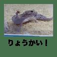 おるふぇん's Vol. 2