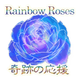 miracle rainbow roses