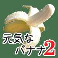 元気なバナナ 2