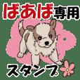 A cute dog Sticker used by grandma P1