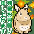 もふもふウサギ 4 #夏
