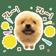 THE DOG 応援団