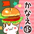【かなえ】専用15
