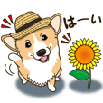 Welsh Corgi's summer sticker. Vol.2