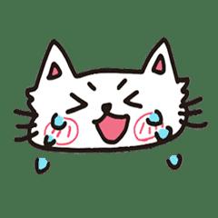 貓貓喵喵 - 小白貓日常 -