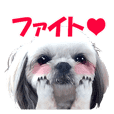 Stickers for people like shih-tzu