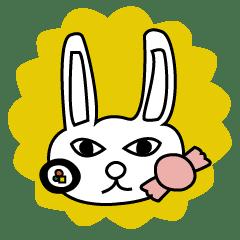 Dieter rabbit