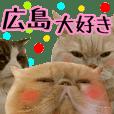 『ネコ写真』広島弁スタンプ