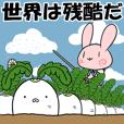 Rabbit Radish 5