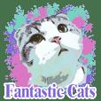 fantastis kucing