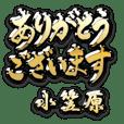 金の敬語 for「小笠原」