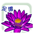 lotus flower - word,Taiwanese,Minnan