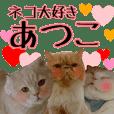 『ネコ写真』名前スタンプ【あつこ】