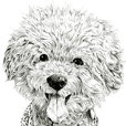vol. 8 Dogs of Takahiro Yamada 1