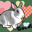 もふもふウサギ 5 #ハートフル