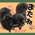 【ヒナちゃんFriend1】
