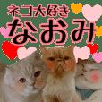 『ネコ写真』名前スタンプ【なおみ】