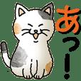 Japanese syllabary cat's