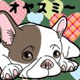 わんこ日和 フレンチブルドッグの仔犬4
