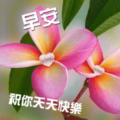 Good Morning Animated Greeting Card Line贴图 Line Store