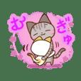 Daifuku-nyannyan kijitora & mikeneko 2