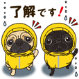 A sticker willingly. Pug's summer. 2