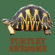 Words of Turtles