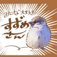 suzume_san