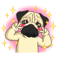 Papi Pug Animated!