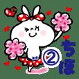 【ちほ/チホ】2★うさぎリボン 応援パック