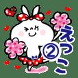 【えっこ】2★うさぎリボン 応援パック