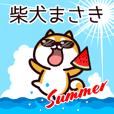 柴犬まさきの夏