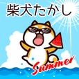 柴犬たかしの夏