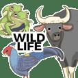 Wildlife friends