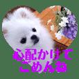 白ぽめ♡しゅりりんスタンプ.4