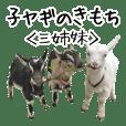 子ヤギのきもち【三姉妹の日常】吉懸牧場1
