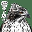 日本の野鳥4