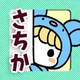 Sachika project