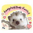Hedgehog's Rado family2