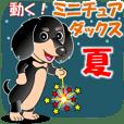 動く!ミニチュアダックス10「夏」