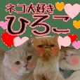 cat paradise hiroko