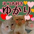 『ネコ写真』名前スタンプ【ゆかり】